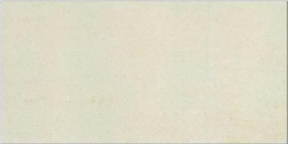 GẠCH TAICERA HC600*298-313N