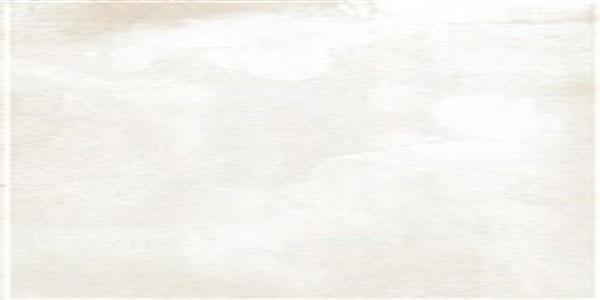 Gạch Taicera GC600x299-822