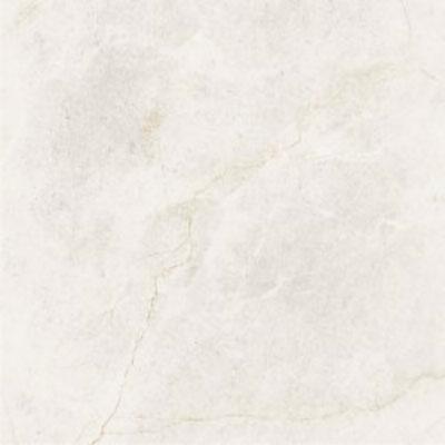 Gạch Taicera G68845