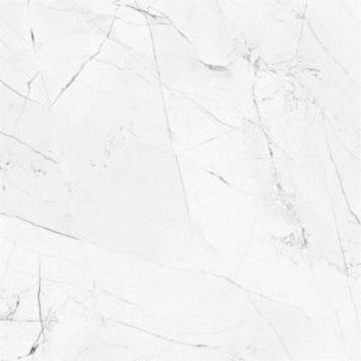 Gạch Taicera GP68905