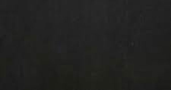 Gạch Taicera HC600*298-319