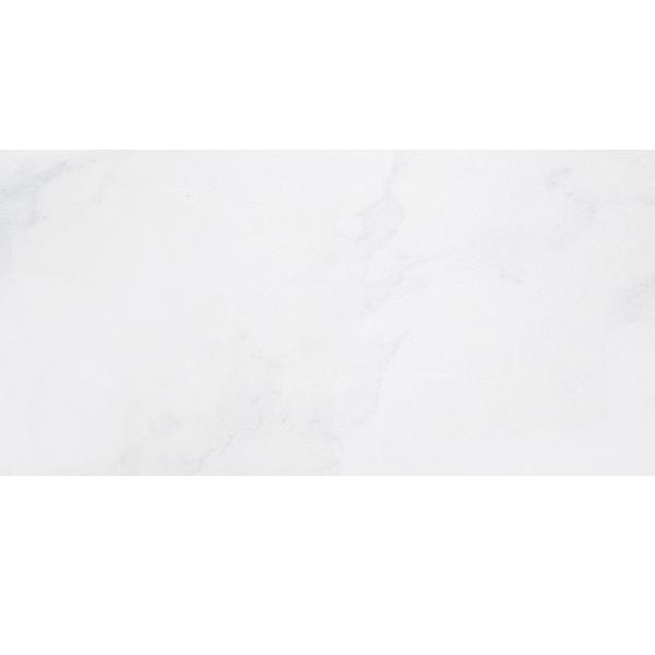 Gạch Taicera PC600x298-418N