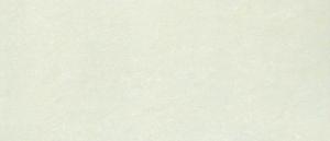GẠCH TAICERA PC800x398-703N