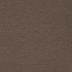 Gạch Taicera G68521