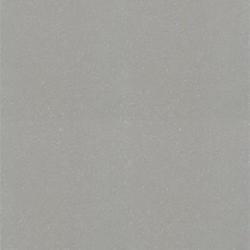 Gạch Taicera P67001N