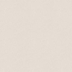 Gạch Taicera P87005N
