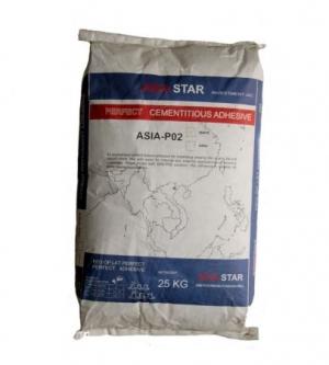 ASIA-P02