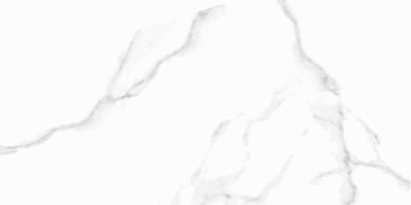 gạch Taicera G63945