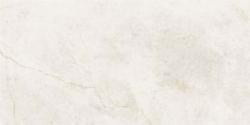 Gạch Taicera G63845